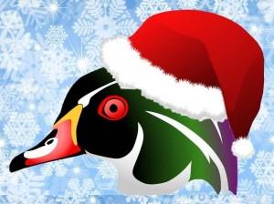 Christmas Bird Count for Kids 2015 @ Burnaby Lake Nature House | Burnaby | British Columbia | Canada