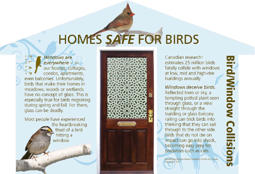 FLAP-Home_Safe_for_Birds