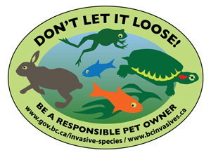 Dont-let-it-loose-logo-web