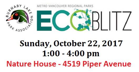 EcoBlitzPoster-FB-Event-2017-10-22